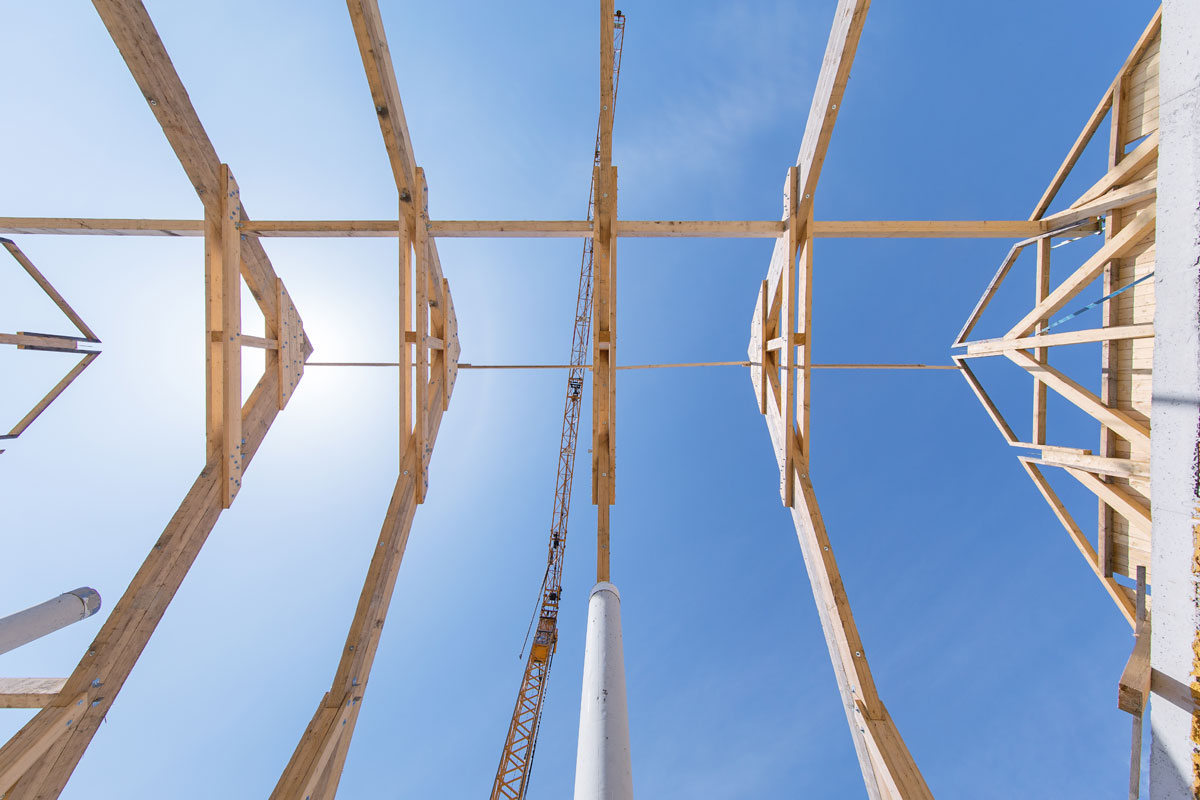 Stallbau Dachkonstruktion
